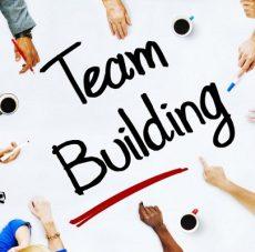 Làm việc nhóm cần kỹ năng gì?