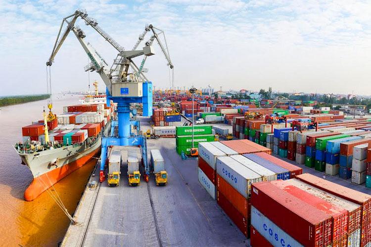 nghề xuất nhập khẩu
