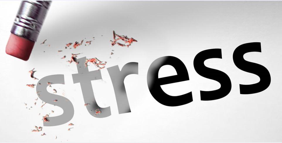 Chịu đựng Stress – Cách giảm stress hiệu quả