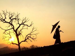 Người khôn ngoan chỉ nói điều mình cần, kẻ dại dột luôn nói điều mình muốn